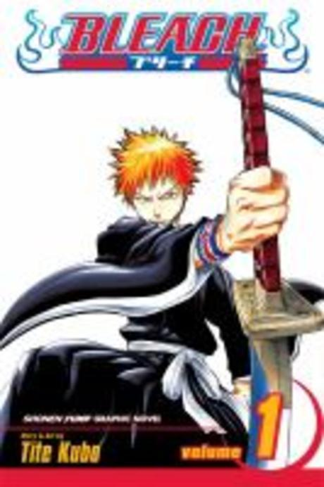 Bleach, Vol. 1 1 (Strawberry and the Soul Reapers)