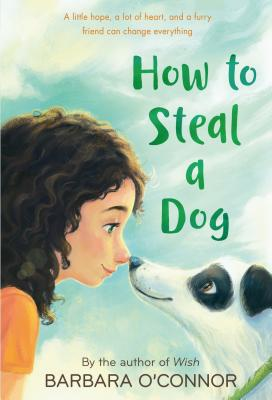 How to Steal a Dog 표지