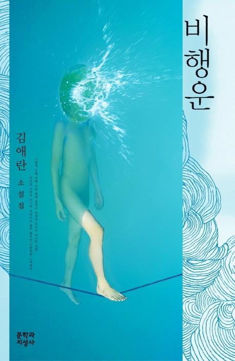 비행운 : 김애란 소설집   표지