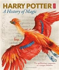 Harry Potter : (A)History of magic