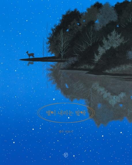 별이 내리는 밤에 표지